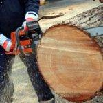 forestry machinery and power tools